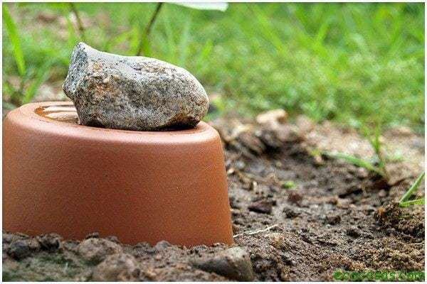 gardening watering ollas 09 Sistema de riego, hecho con dos macetas