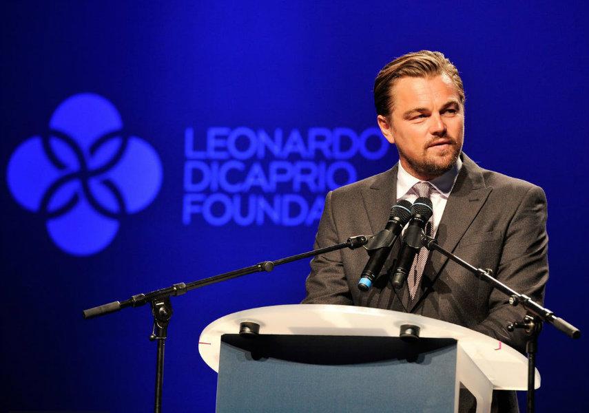 LDC Foundation