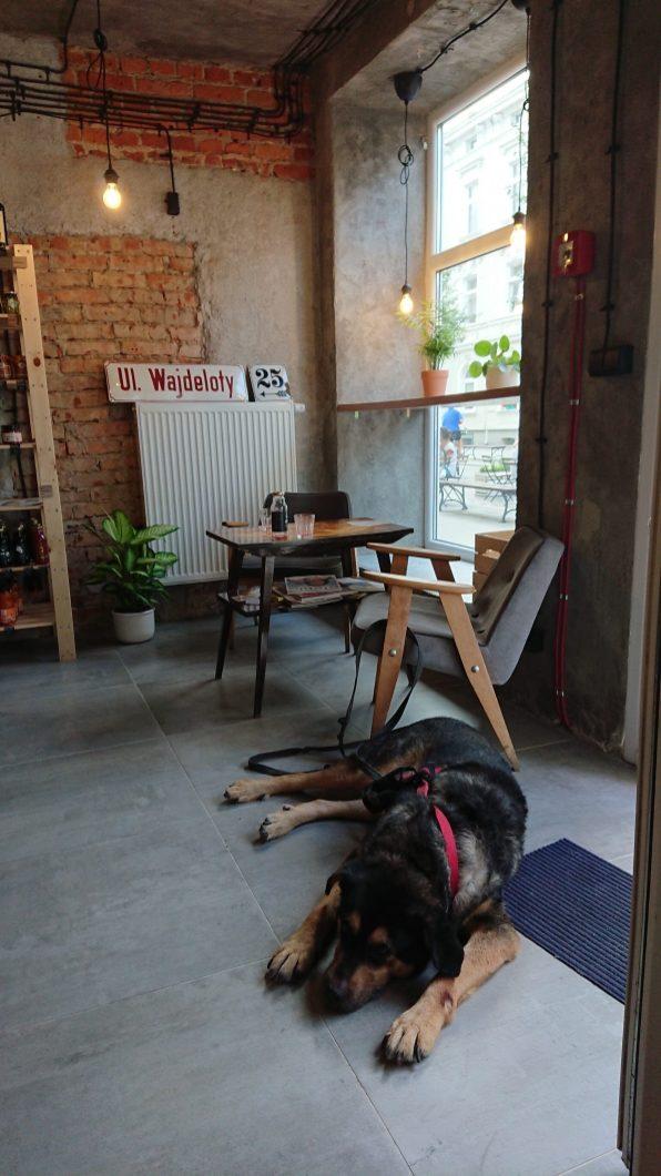 Wajdeloty 25 - sklep less waste pies