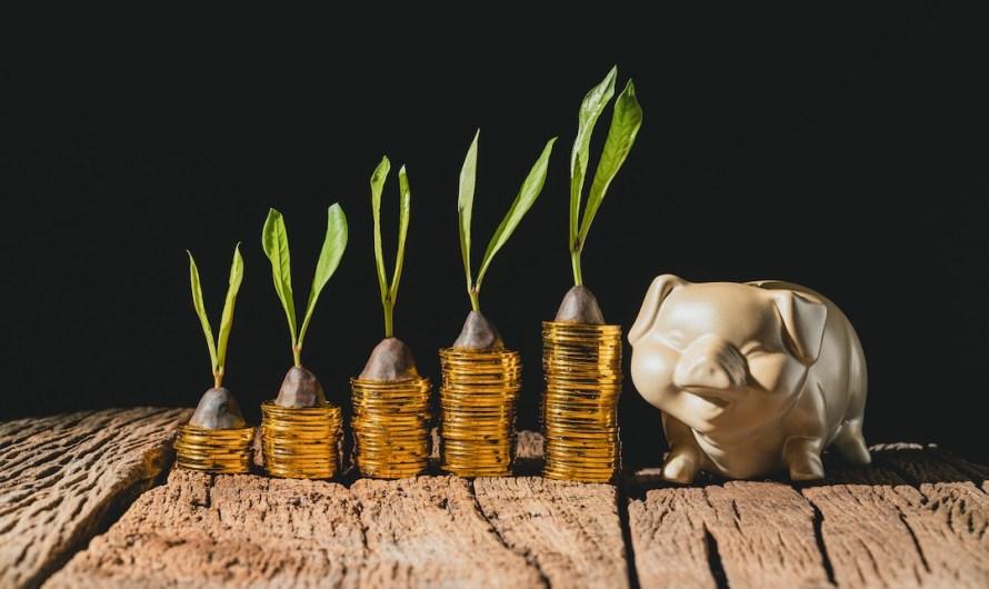 Zielone finanse, czyli odpowiedzialny biznes w sektorze bankowym