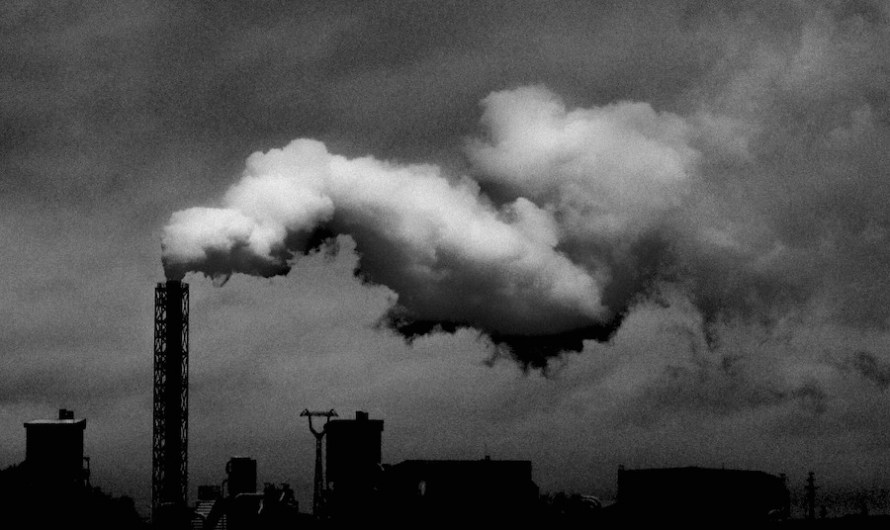 """Gwarancje BGK w programie """"Czyste powietrze"""""""