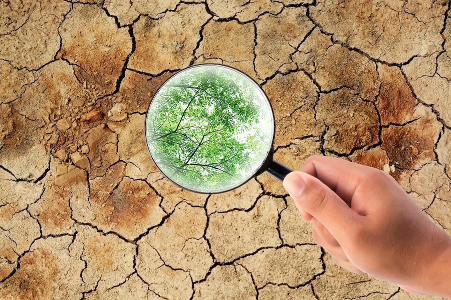 prawo klimatyczne