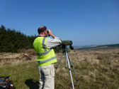 bird survey