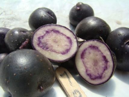 Arbolona negra