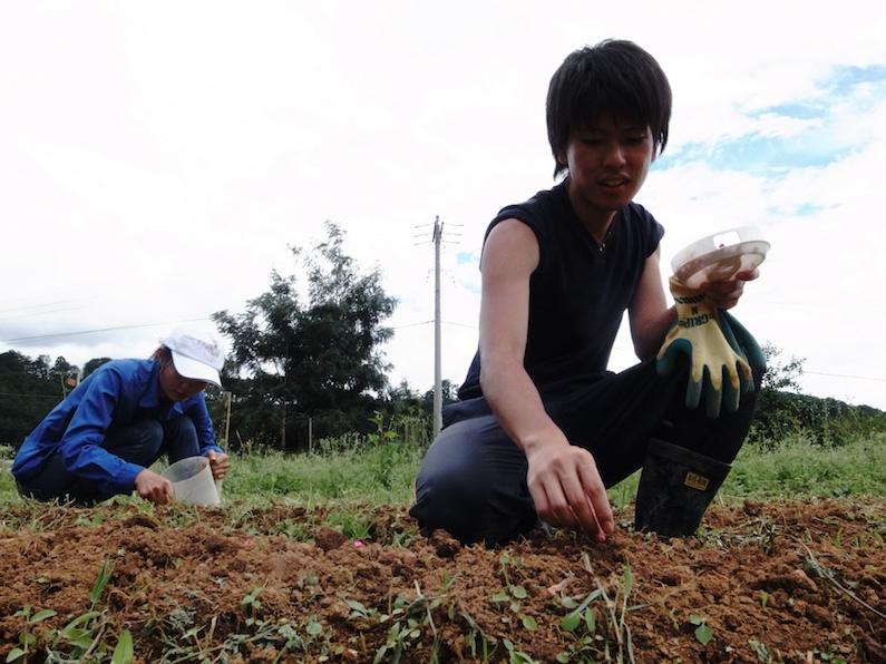 村おこしボランティア【ベトナム ダサ村コース】で優しくトウモロコシの種を土に埋めるイケメン