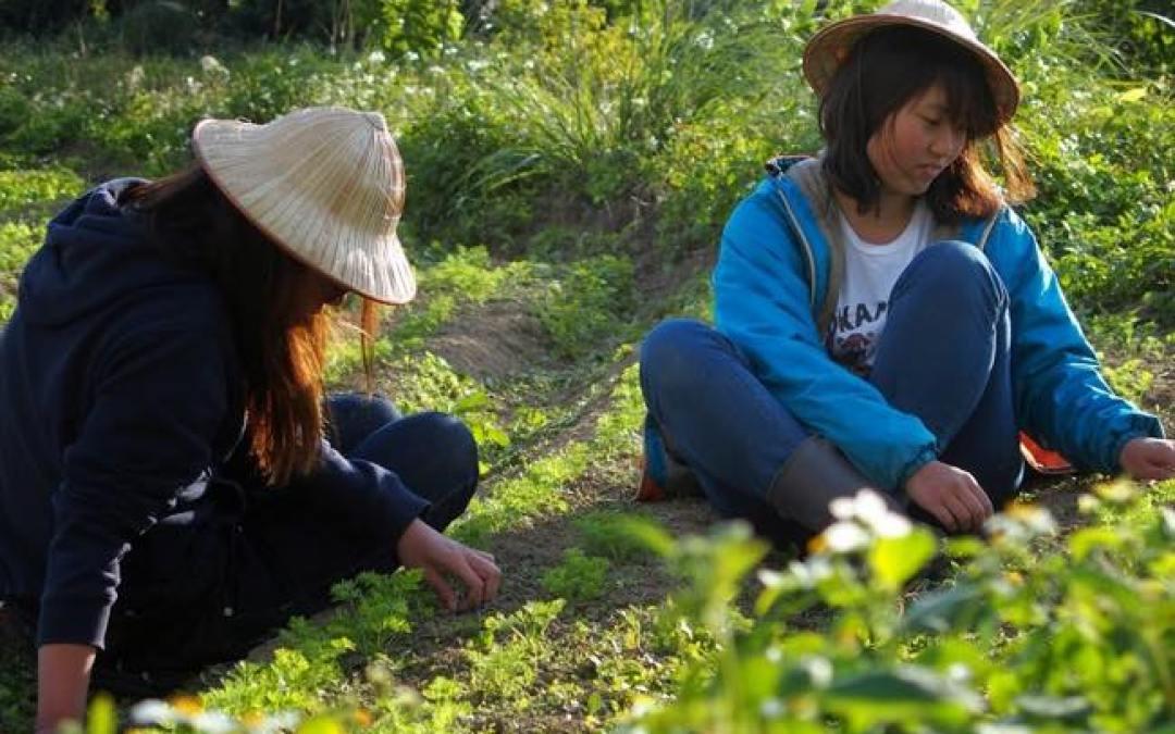 自然農法にどっぷり使った一日は、お別れも近い一日…。