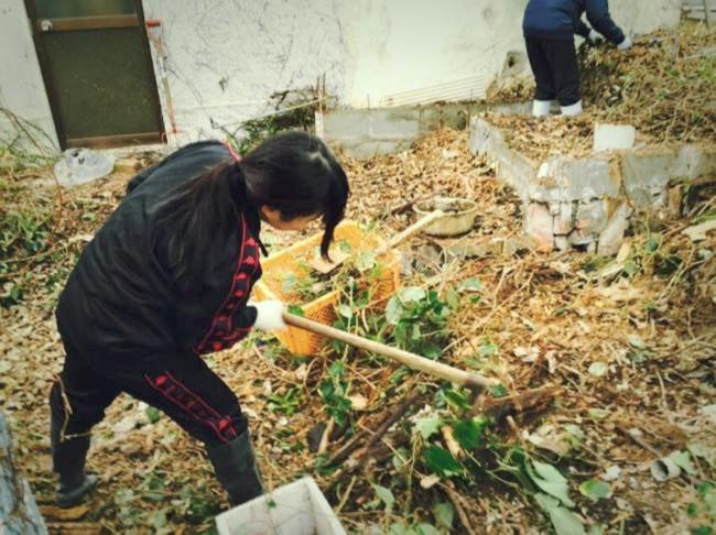 村おこしボランティア【宝島コース】で空き家のリフォーム作業を手伝うボランティア