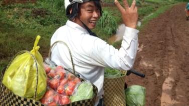 村おこしボランティアベトナム