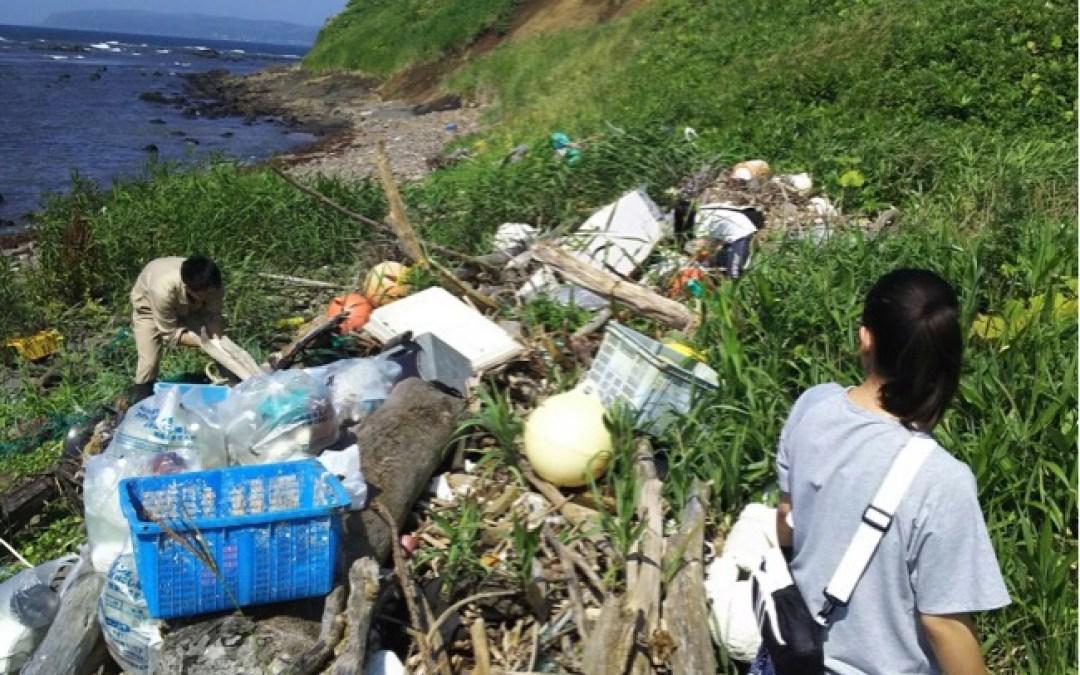 海岸清掃と焼尻島観光