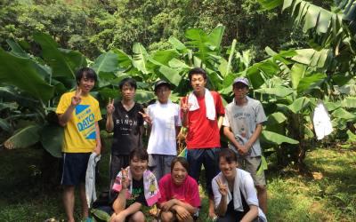 バナナ農園見学