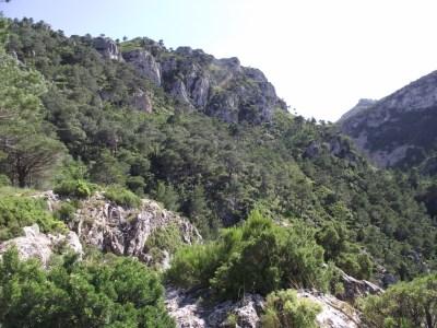Hacia la cabecera del valle