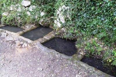 La Fuente del Burgar