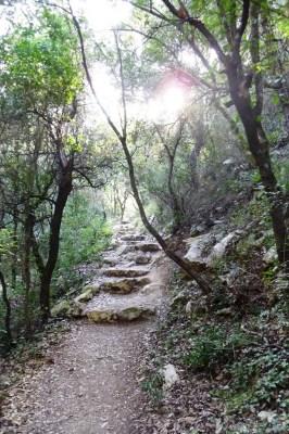 Camino hacia la Fuente del Burgar