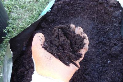 compost de caballo