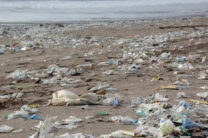 Plastic littering our environment