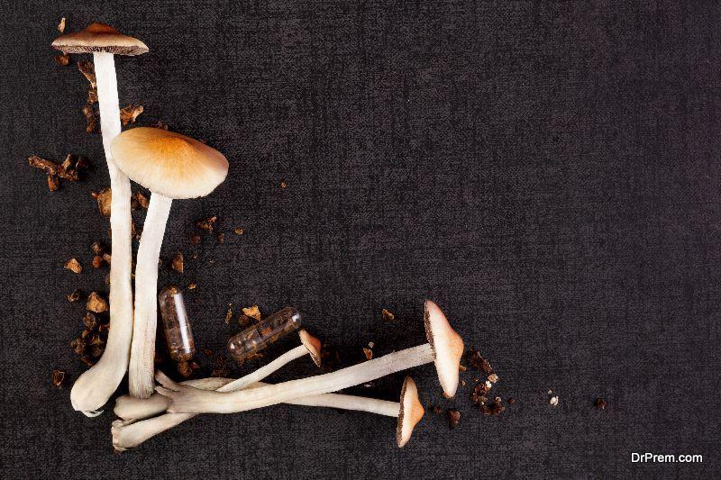 magic-mushrooms
