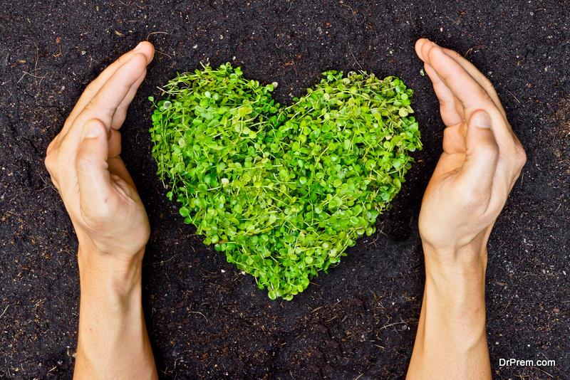 environmental ethics essay paper