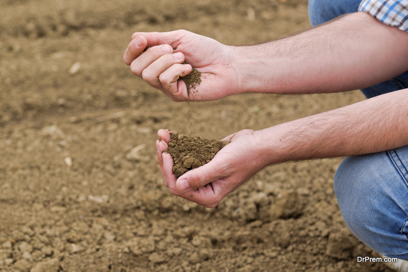 ways-to-improve-soil-quality