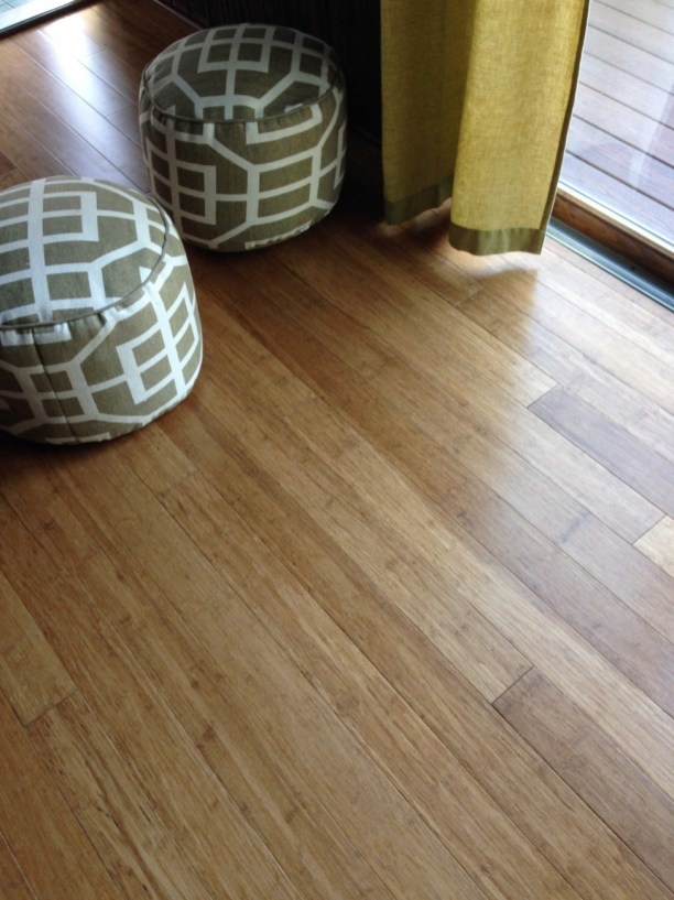 Carbonized Fibre Strand bamboo in a Sunroom