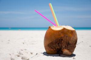 Natural fresh coconut raw food