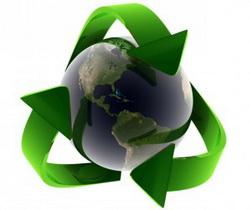 eco relocation logo