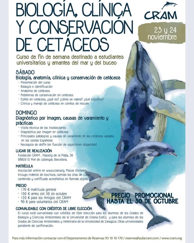CURSO SOBRE BIOLOGIA Y CONSERVACION CETÁCEOS