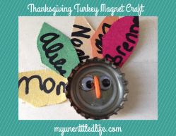 DIY: Thanksgiving Decor & Crafts | ecogreenlove