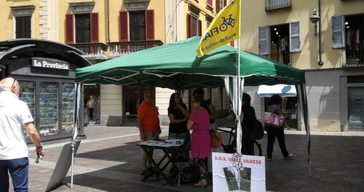 Più di mille firme per salvare Viale Varese