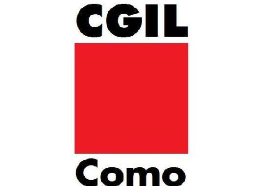 Cgil/ No al decreto dell'insicurezza/ Taser pericolosi/ Riviva la Forestale
