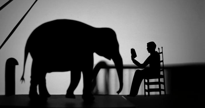 27 ottobre/ Memorie di un'elefantessa a MIlano