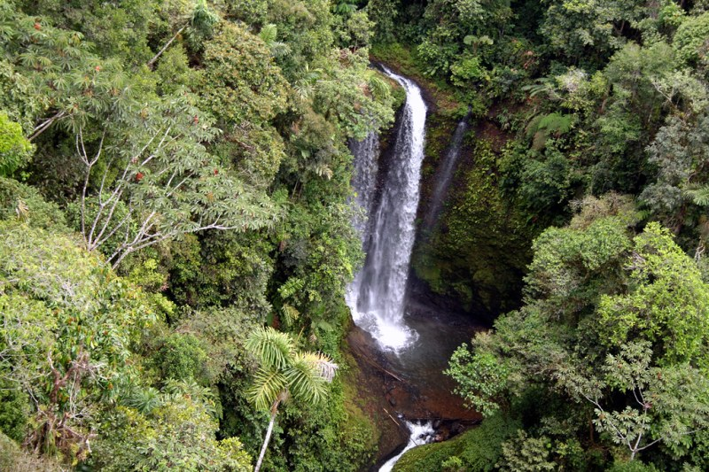 foresta pl.cascata