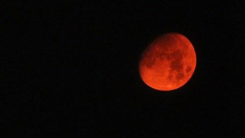 luna rossa palermo incendio altofonte
