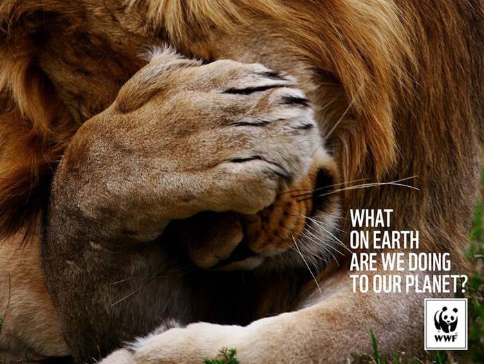 Qué diablos estamos haciendo con nuestro planeta
