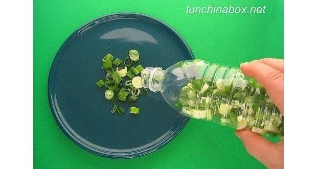 Como conservar cebolletas