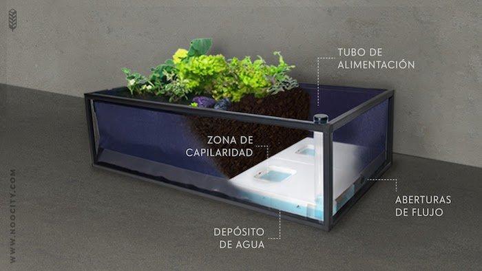 Noocity Urban Ecology funcionamiento