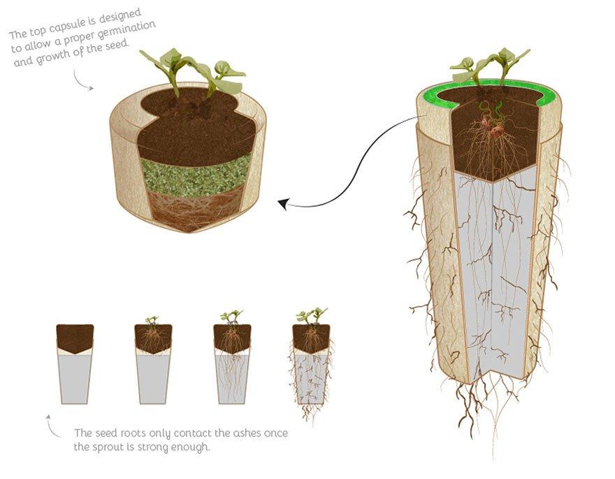 Como trabaja urna bios