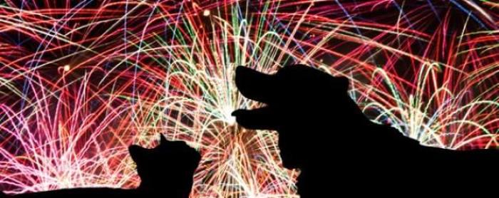 Fuegos artificiales sin ruido