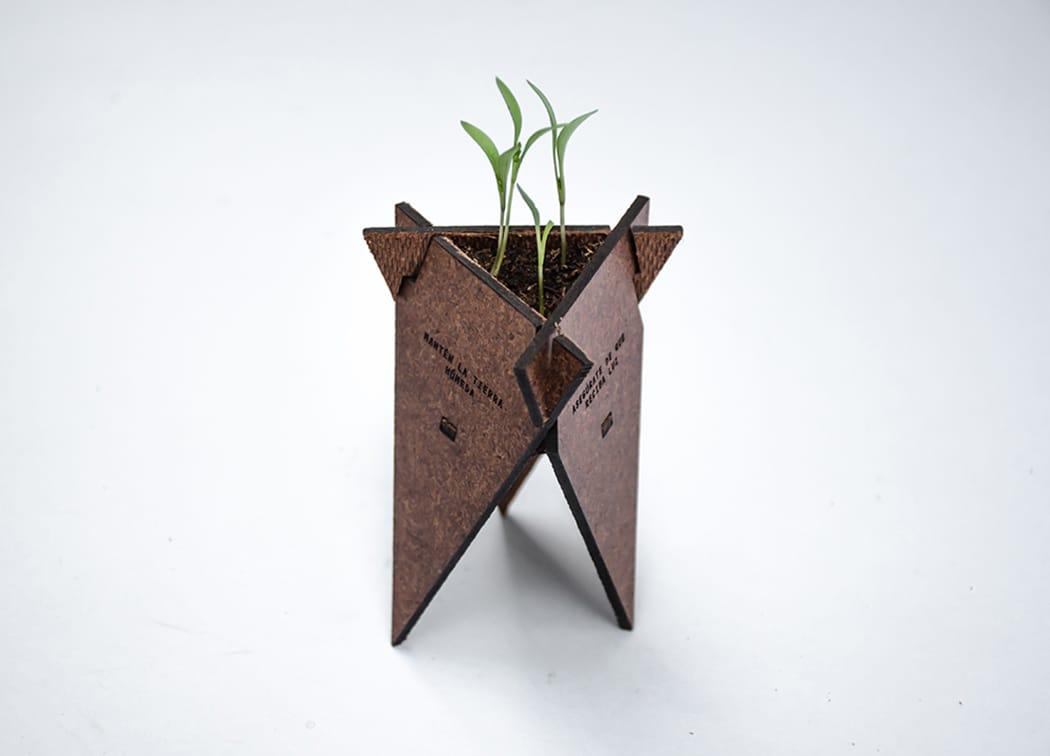 Solución de germinación orgánica5