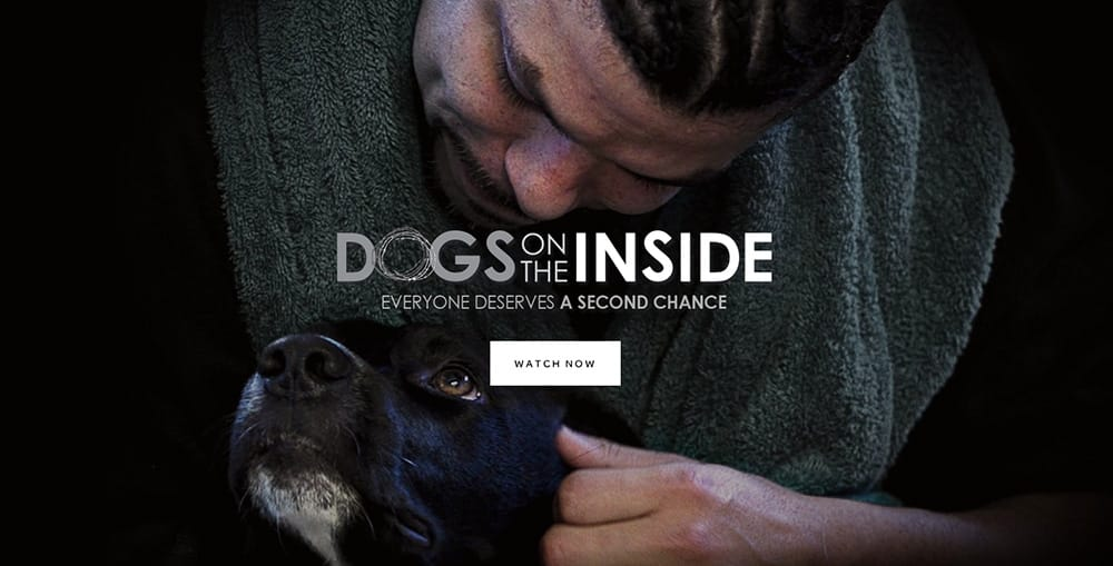 Documental: Dogs on the inside