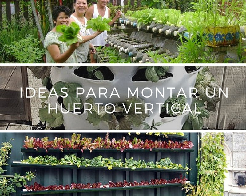 Ideas para montar un huerto vertical Como construir jardines verticales caseros
