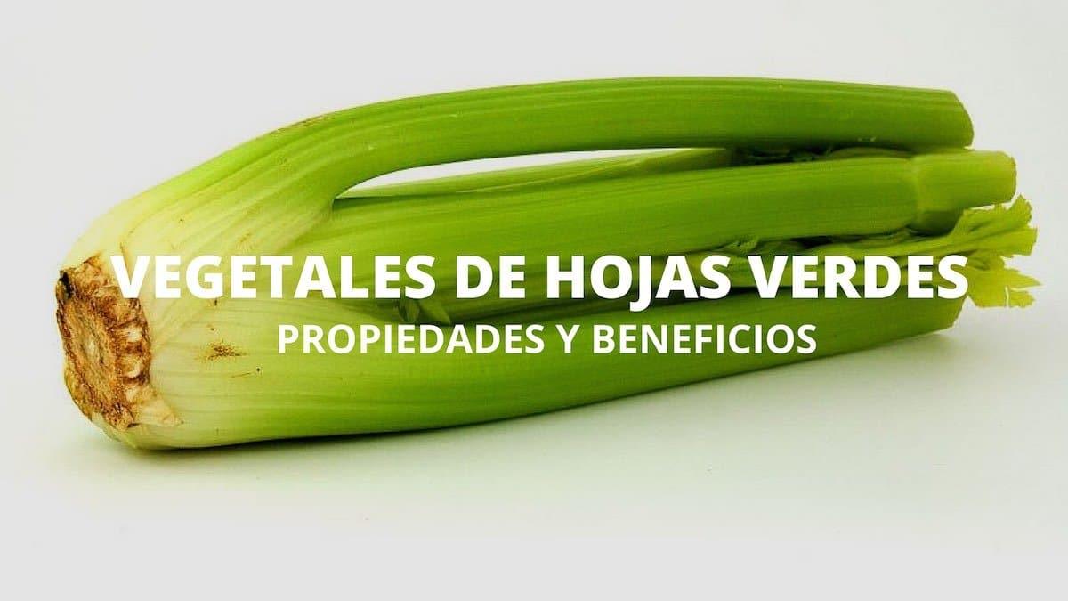 Beneficios y propiedades de los vegetales de hojas verdes