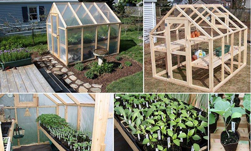 c mo construir un invernadero con estructura de madera