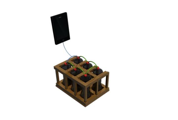 Como hacer una pila casera ecológica3