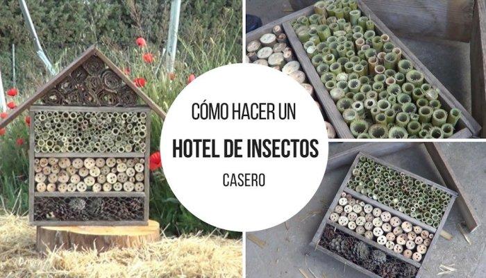 Cómo hacer y porque instalar un hotel de insectos en tu huerto