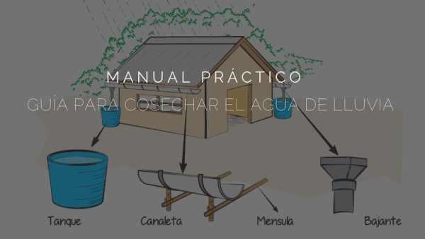 Guía-para-cosechar-el-agua-de-lluvia