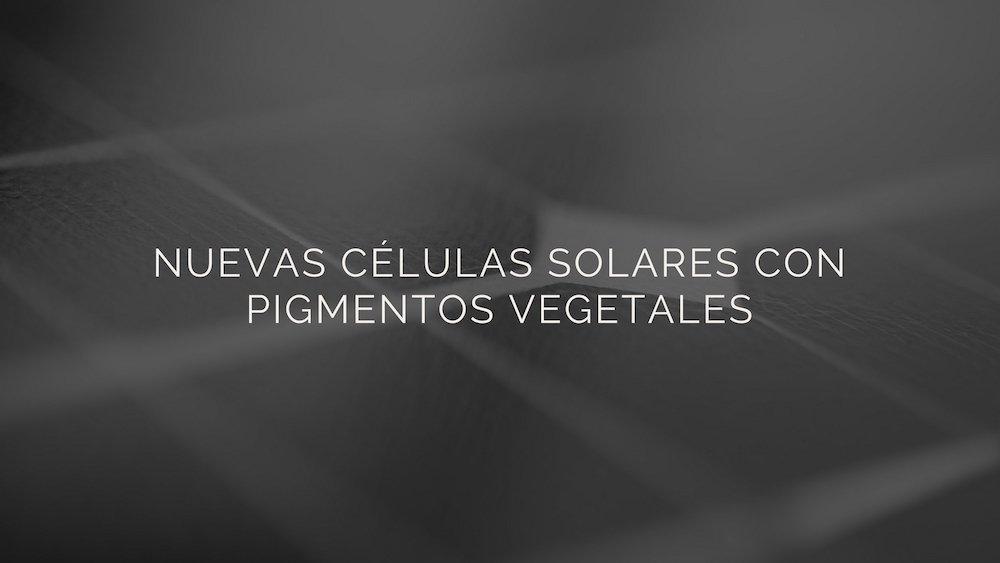 células solares con pigmentos vegetales