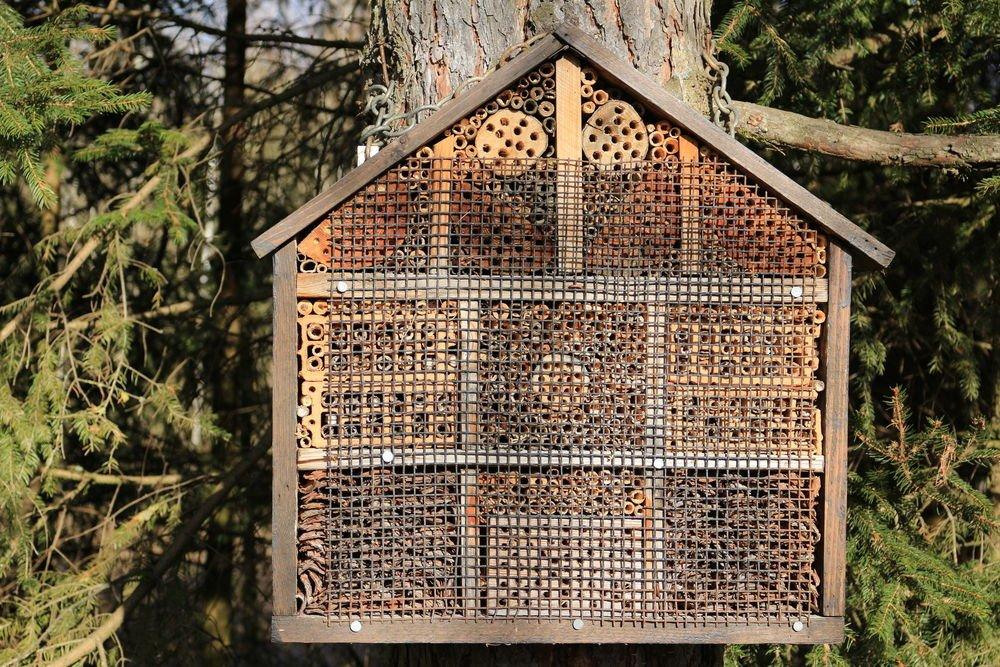 Coloca tu hotel para abejas
