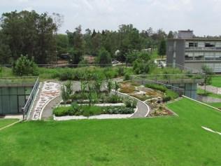 Vista de la azotea verde (2). (Foto: Juan Martínez Cruz)