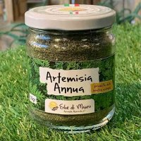Tisana all'artemisia annua in polvere, 50 g