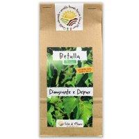 Tisana diuretica naturale alla betulla
